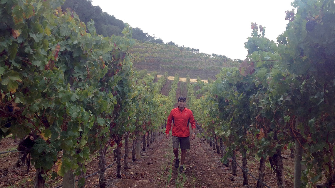 Winemaker Daniel LeFrancois